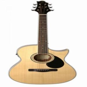 Đàn Guitar Samick GA-100SCE