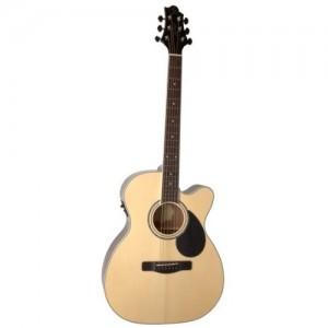 Đàn Guitar Samick GOM-100 SCE
