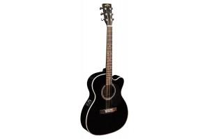 Làm thế nào có thể lựa chọn mua cây đàn guitar sinh viên